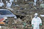 Japonezii RETURNEAZĂ 78 de milioane de dolari găsiţi printre ruine