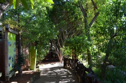 fuegirola-biopark-039