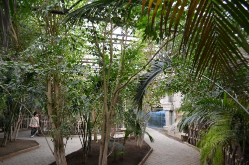 fuegirola-biopark-076