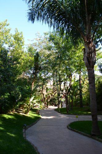 fuegirola-biopark-085