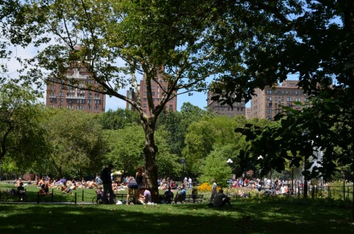 washington-square-844