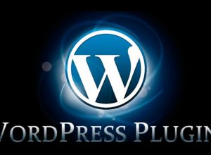 pluginuri wordpress